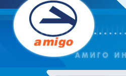 Amigo International